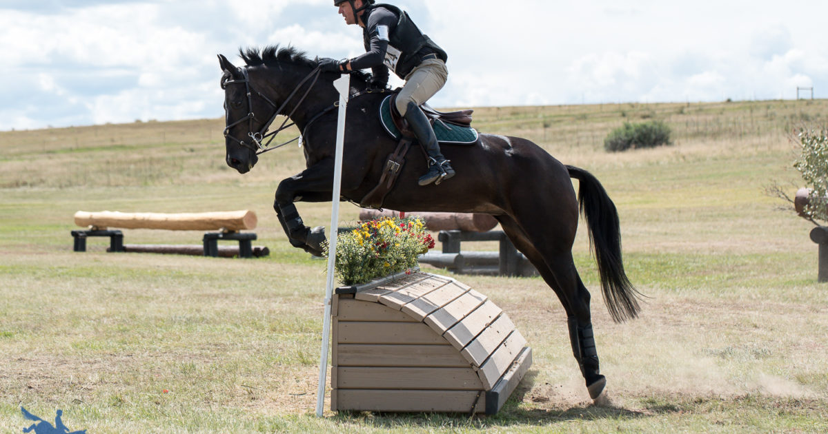 Novice and Beginner Novice Tackle Cross-Country at the 2018