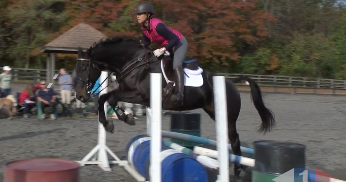 video  eventing training online presents jumping