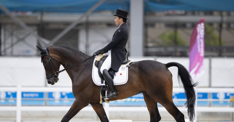 Olympic Equestrian On Flipboard Bloomington Normal Il