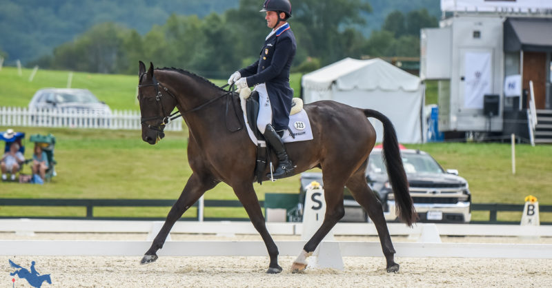 Dutton and Fernhill Pick Pocket Pick Up the Lead in the CCI3*-S at…