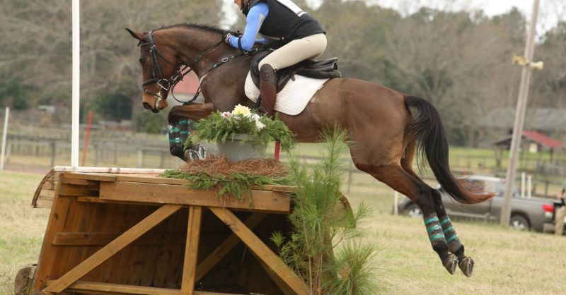 USEA Events A-Z: Sporting Days Farm Horse Trials