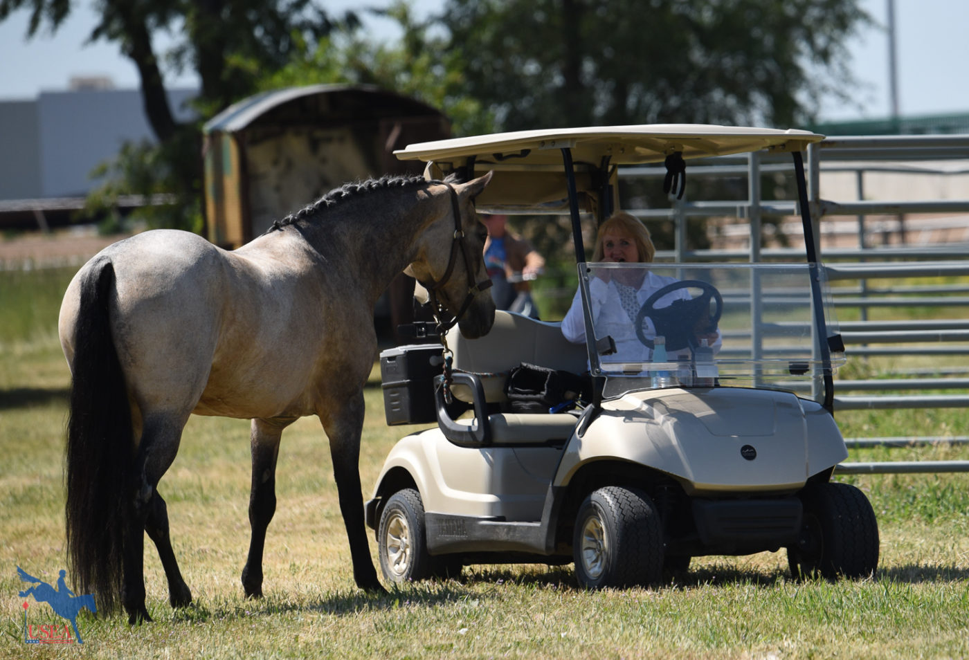 """I think you have treats in that golf cart."" USEA/Claire Kelley Photo."