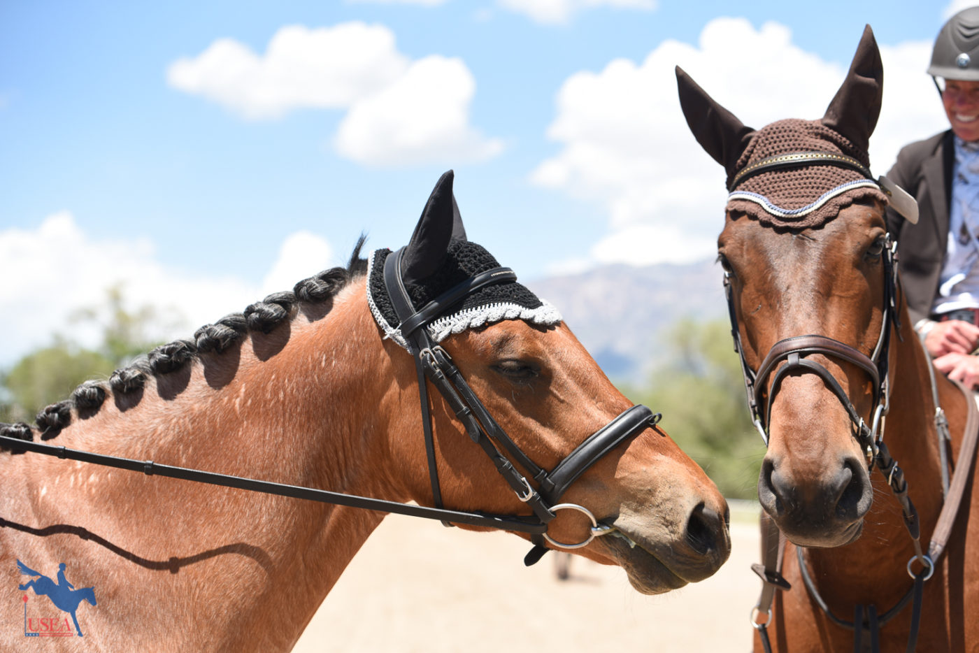 """Hey buddy, I think it's nap time."" USEA/Claire Kelley Photo."