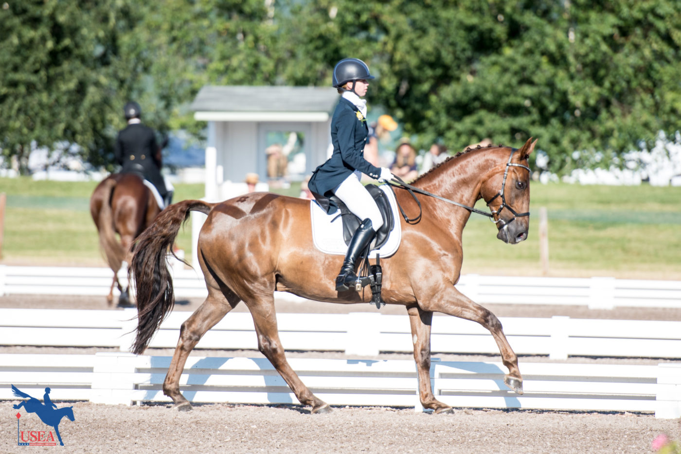 3rd - Sophie Click and Fernhill Rising (Area VII)