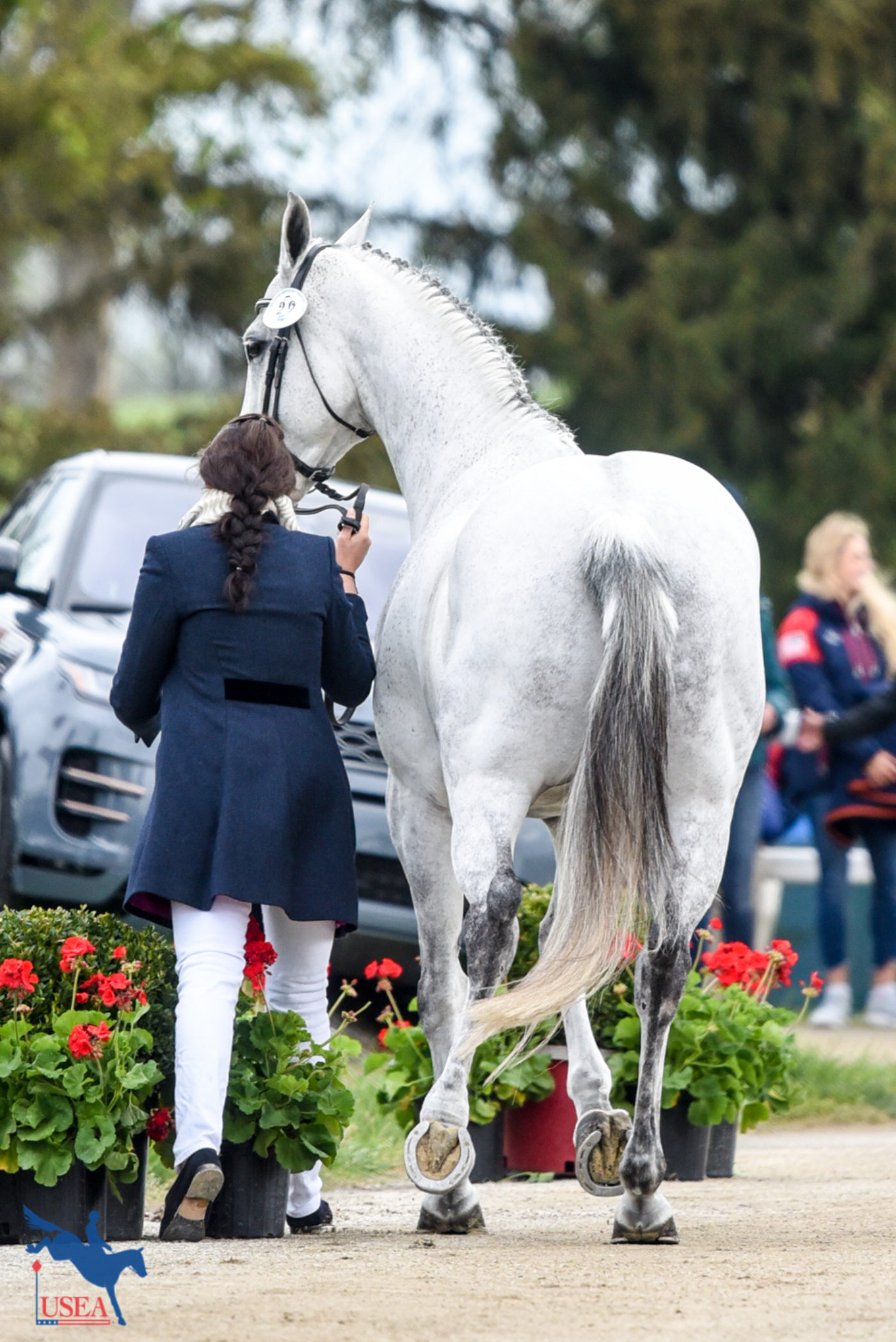 Lauren Kieffer and Paramount Importance take their own path at the final horse inspection. USEA/Leslie Mintz Photo.