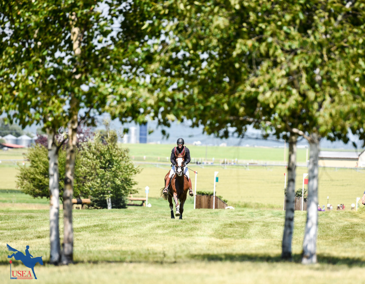 Galloping through Rebecca Farm framed by the trees. USEA/Leslie Mintz Photo.