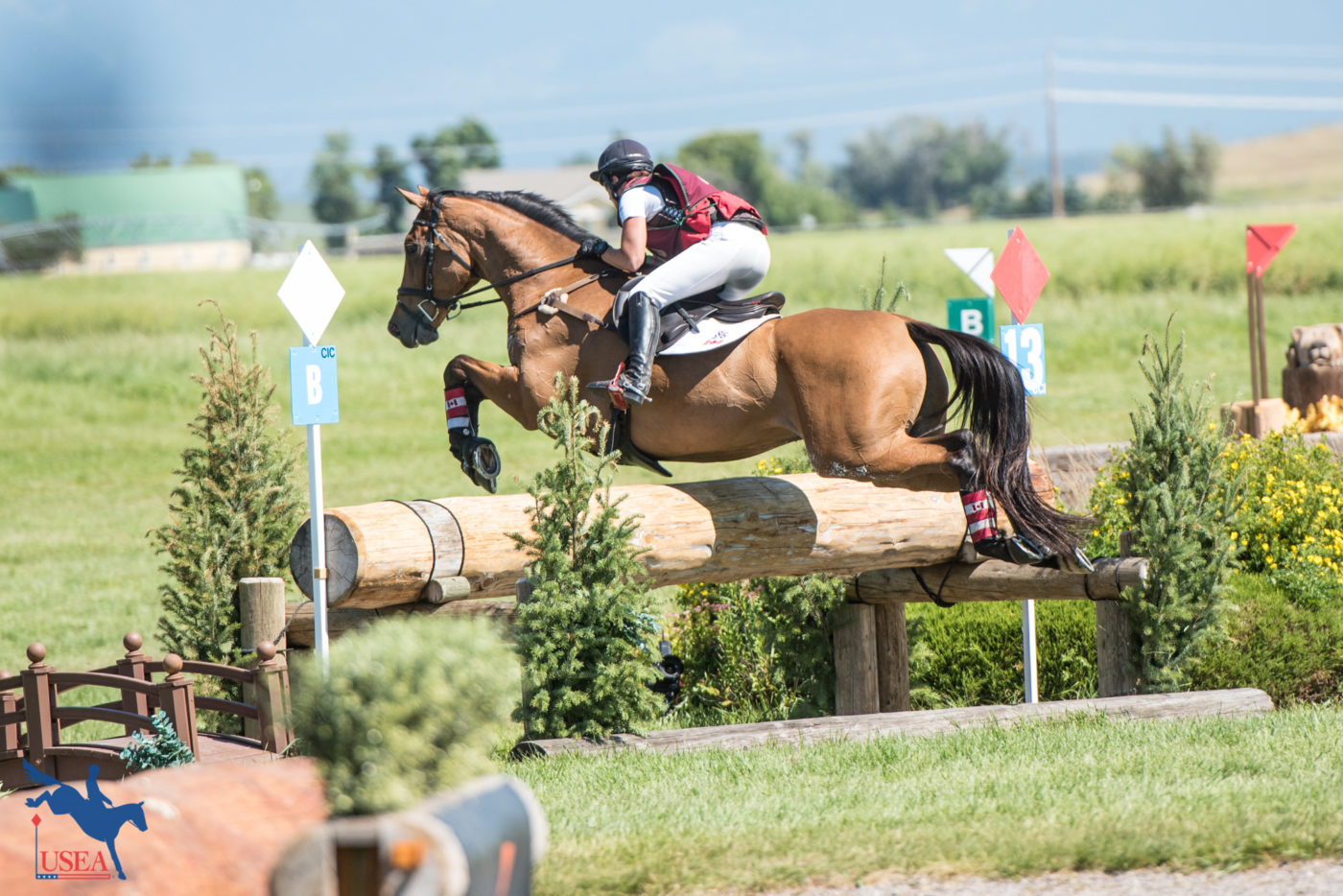 CCI3* - 4th - Holly Jacks Smither and More Inspiration