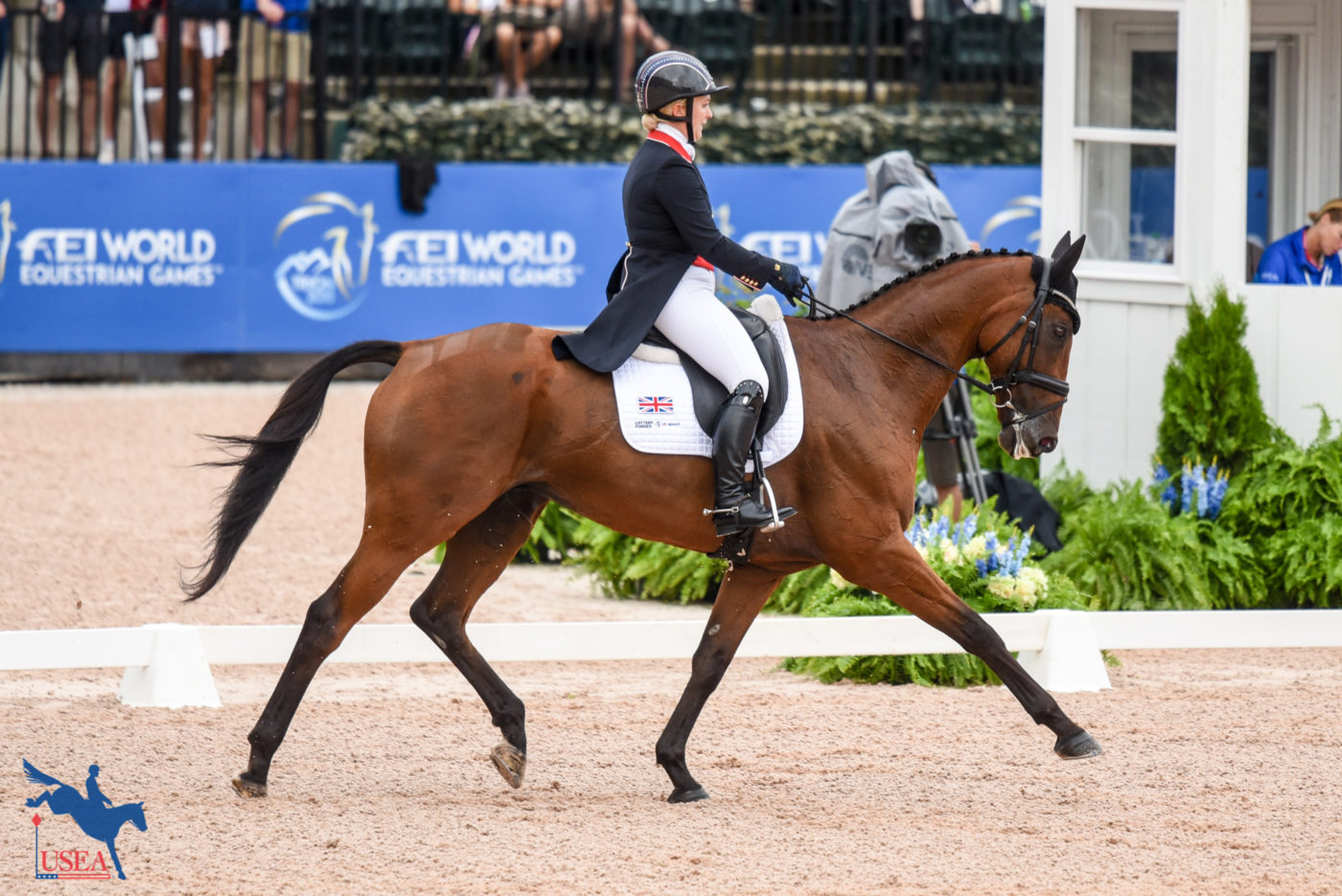 19th - Gemma Tattersall and Arctic Soul (GBR) - 32.40