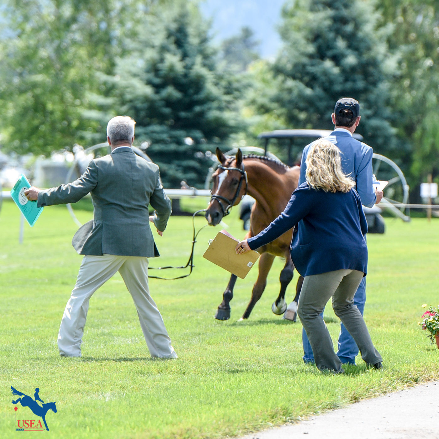 The ground jury does their best to catch a loose horse. USEA/Leslie Mintz Photo.
