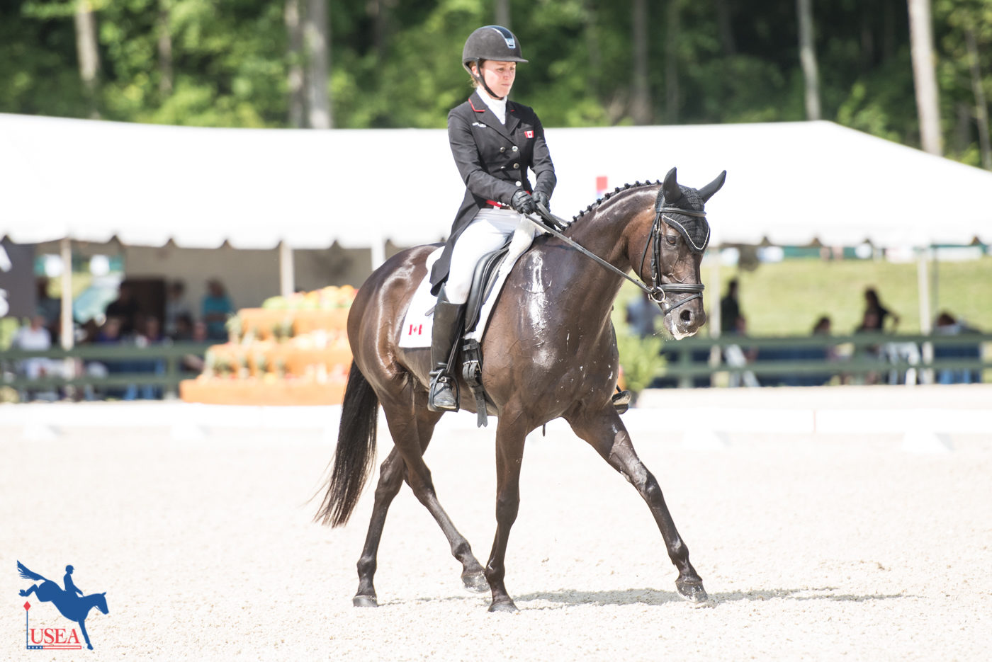 23rd - Jessica Phoenix and A Little Romance - 58.1