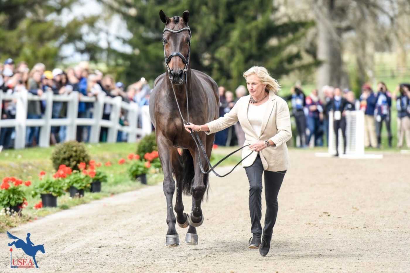 One Key Withdrawal, but Rest Accepted at Final Fair Hill Horse…