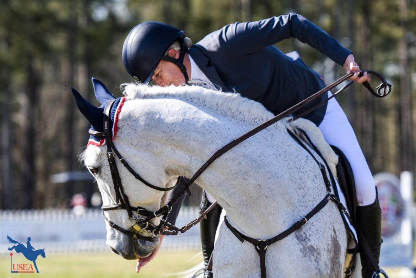 Rubens D'Ysieux gets a cookie before exiting the show jumping arena. This unicorn has Sara Kozumplik Murphy well trained! USEA/Leslie Mintz Photo.