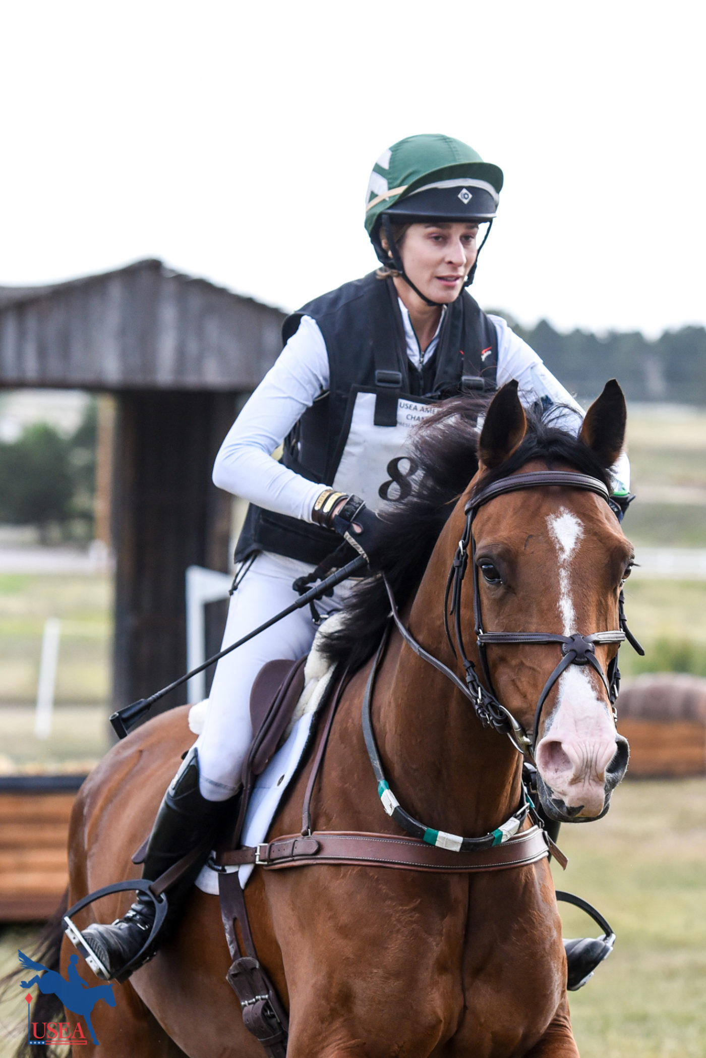 Training Horse - 2nd - McKenzie Rollins and Excel Star Lord