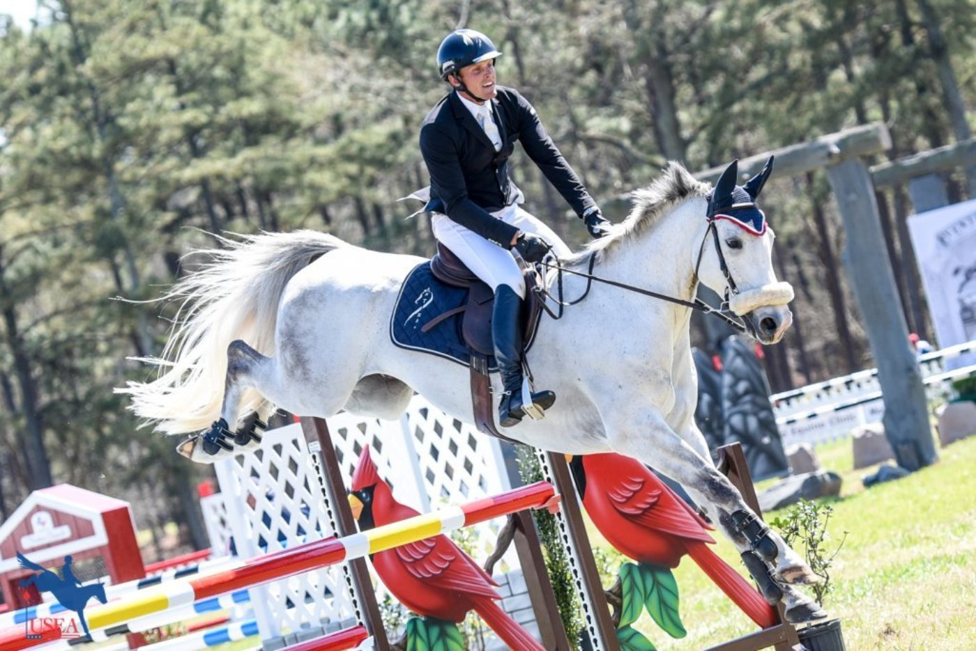 And the white tail award goes to Almanac! USEA/Leslie Mintz Photo.