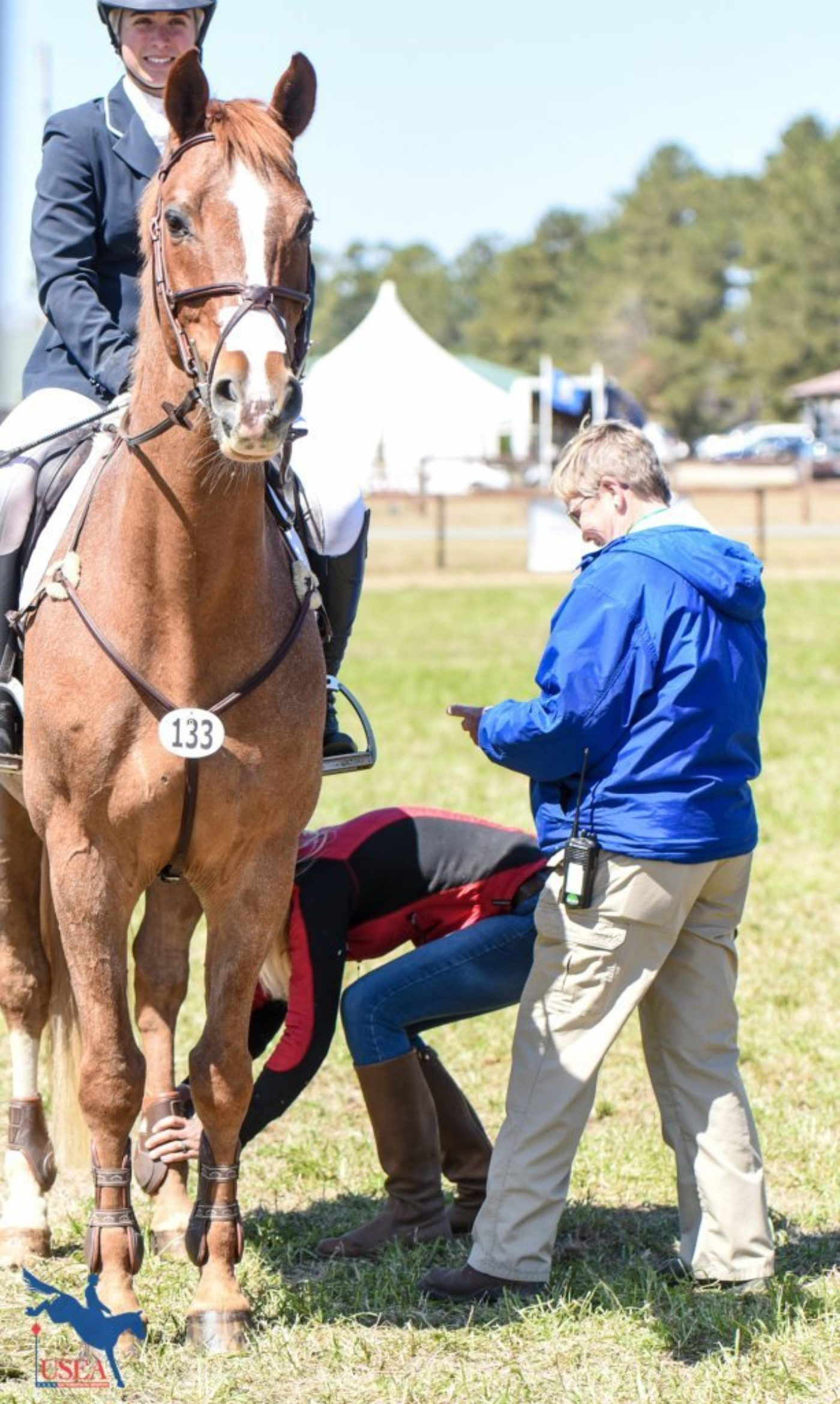 Lindsay Beer's El Paso stands at attention while getting his boots checked before the CIC2* show jumping. USEA/Leslie Mintz Photo.