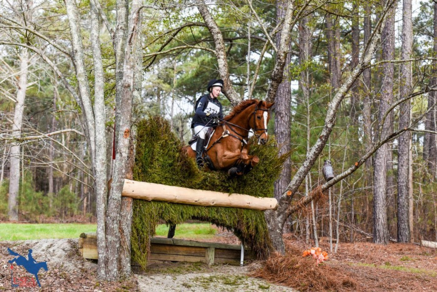 Ian Stark definitely made use of the trees as he planned the cross-country courses. USEA/Leslie Mintz Photo.