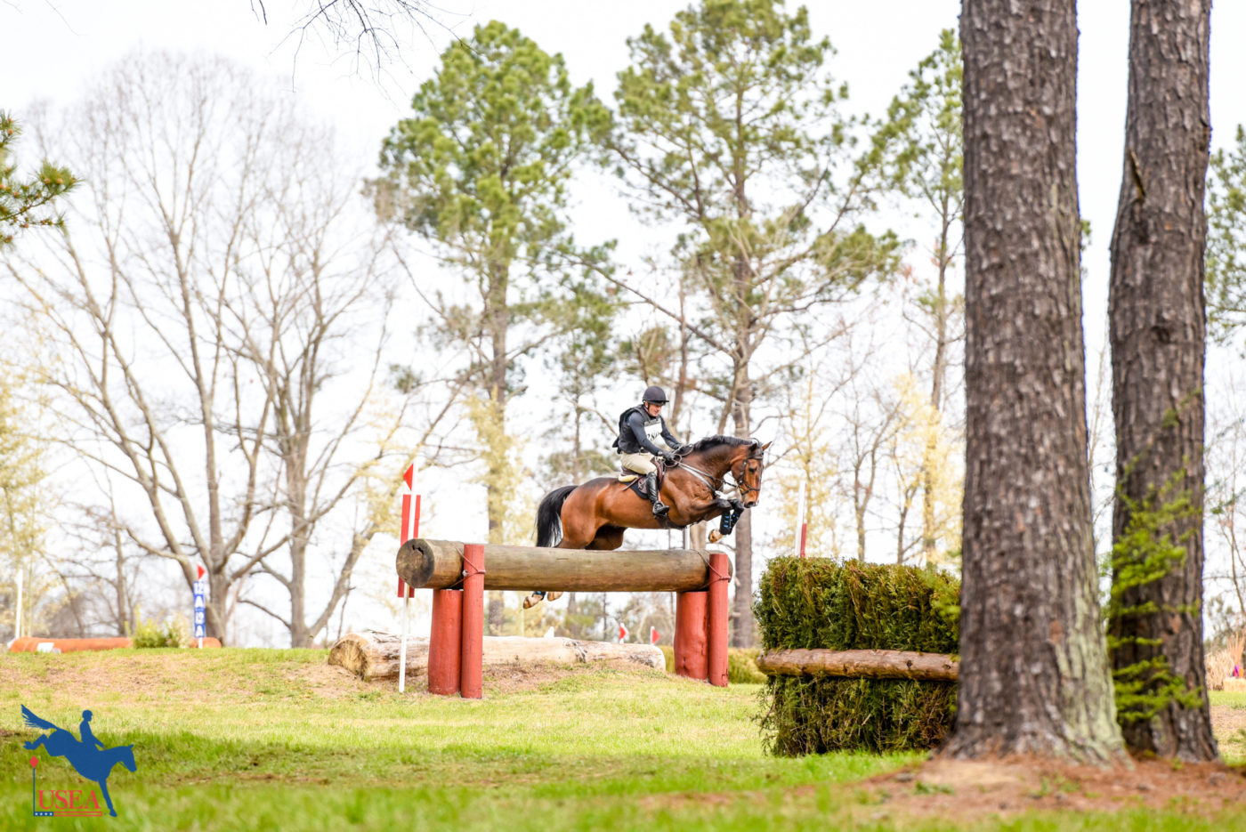 Dave Vos and Spring Centurion tackle a combination on the Intermediate course. USEA/Leslie Mintz Photo.