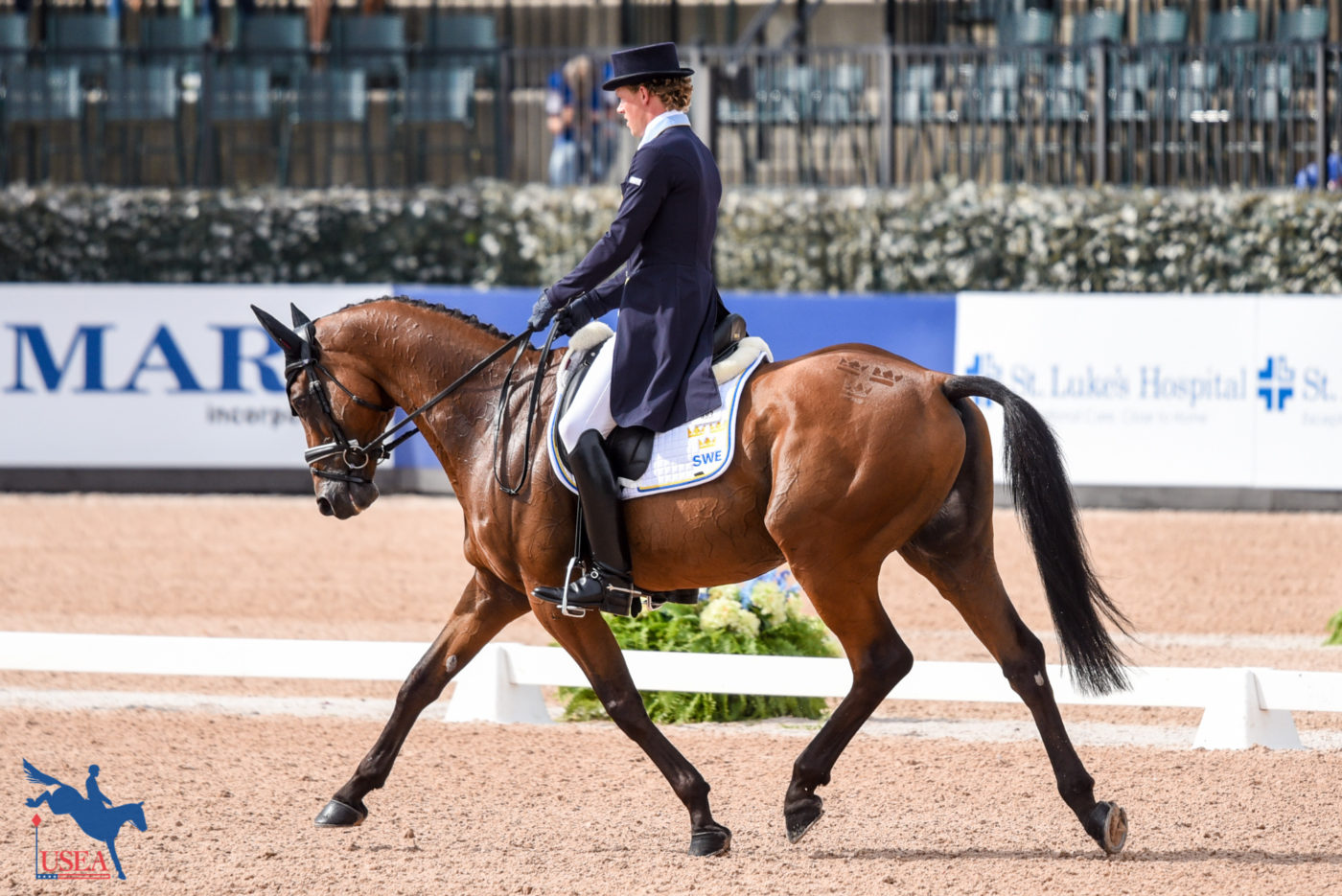 53rd - Ludwig Svennerstal and Stinger (SWE)