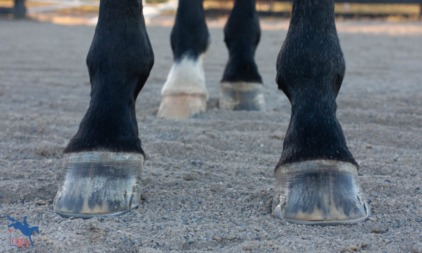 Staying Sound: The Importance of Foot Balance