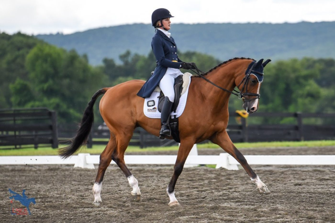 3rd - Allison Springer and Lord Willing - 25.0