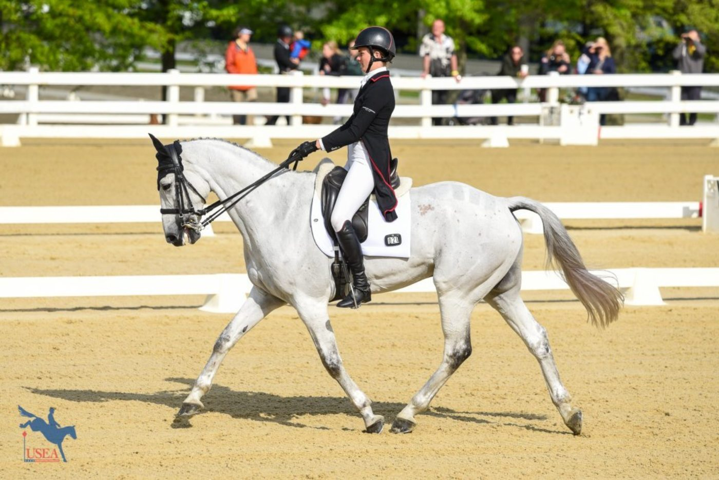 10th - Caroline Martin and Islandwood Captain Jack - 34.7