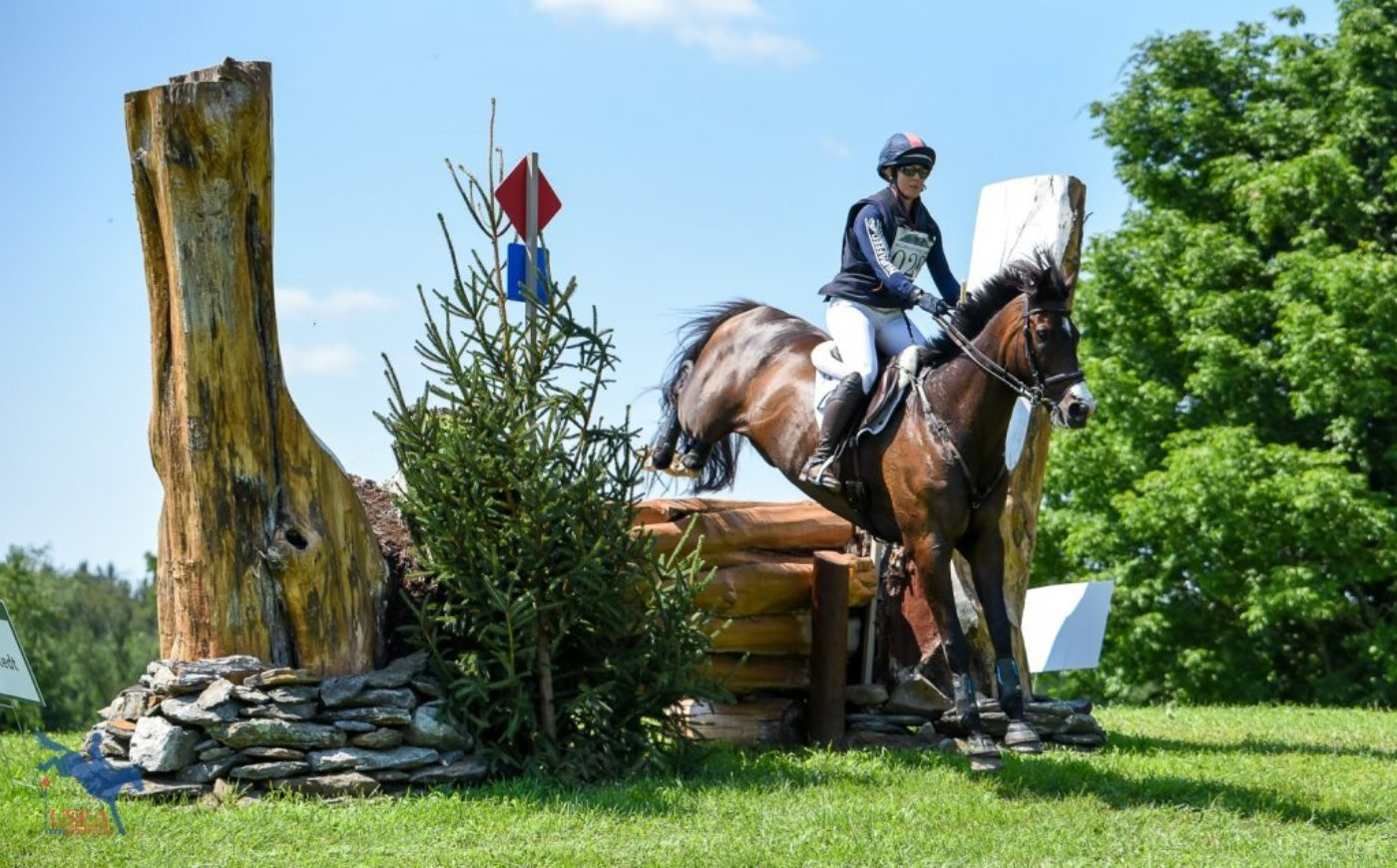 Allison Springer and Business Ben confidently through the split stump and onto the water. USEA/Jessica Duffy Photo.