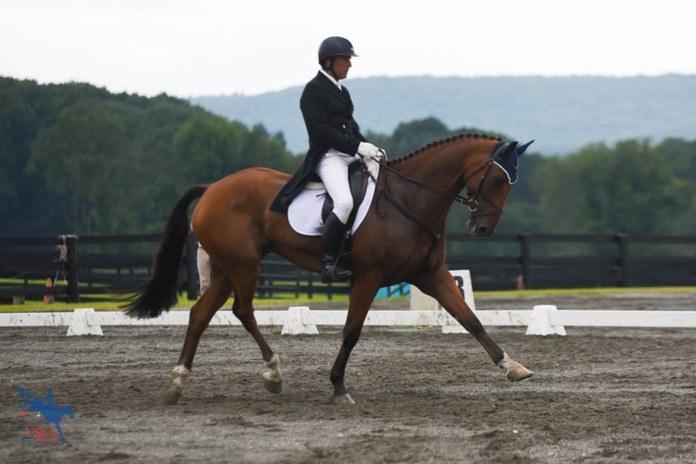 13thT - Dr. Kevin Keane and Sportsfield Candy - 35.2