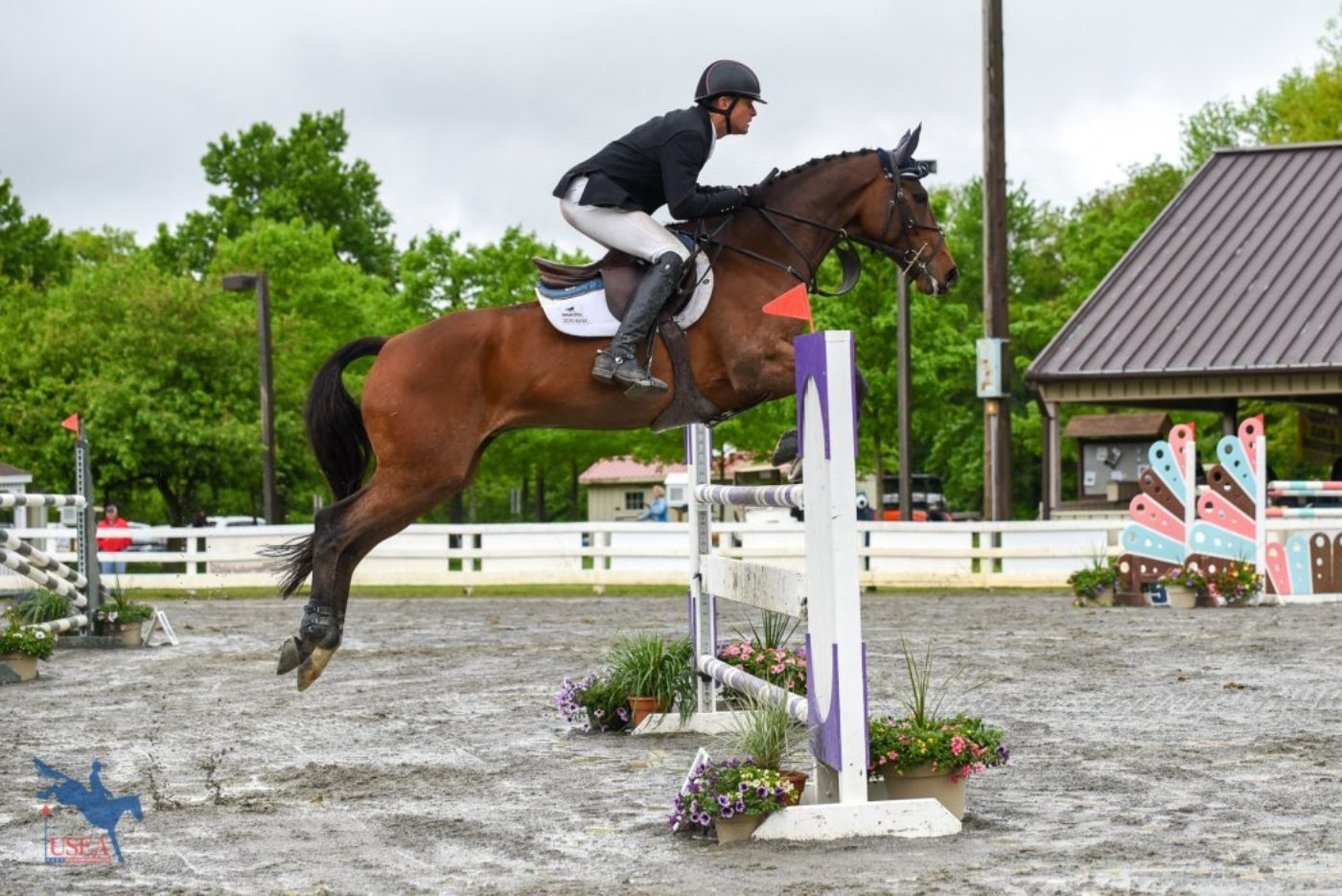 1st - Boyd Martin and Long Island T - 40.2