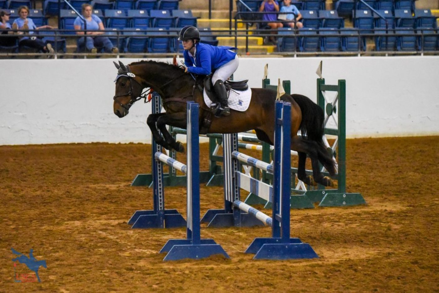 Jackie LeMastus and Exmoor Denever for University of Kentucky. USEA/Jessica Duffy Photo.