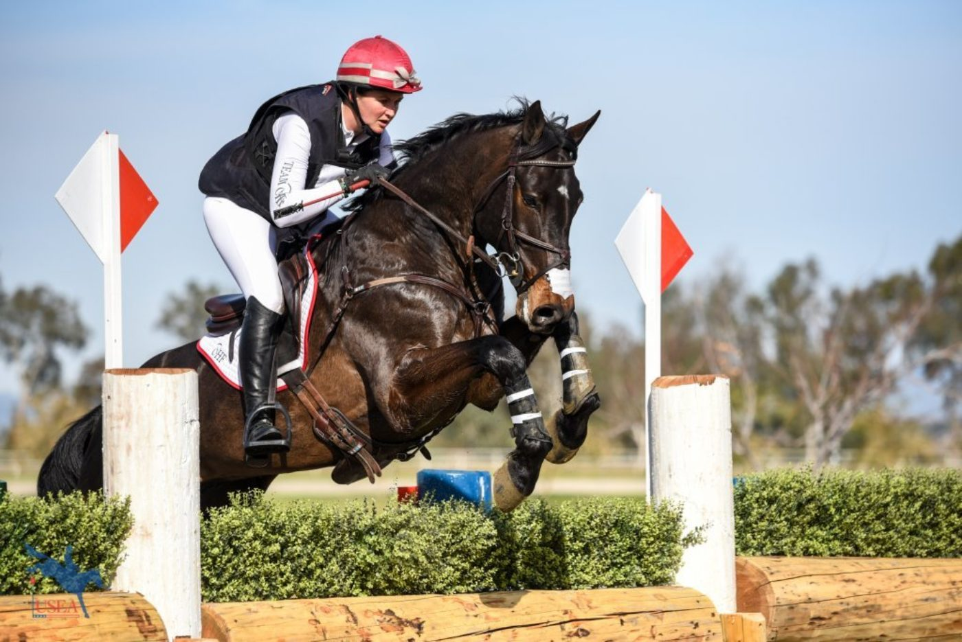 Cinzano with his knees to his nose in the Intermediate with Amber Levine in the irons. USEA/Jessica Duffy Photo.