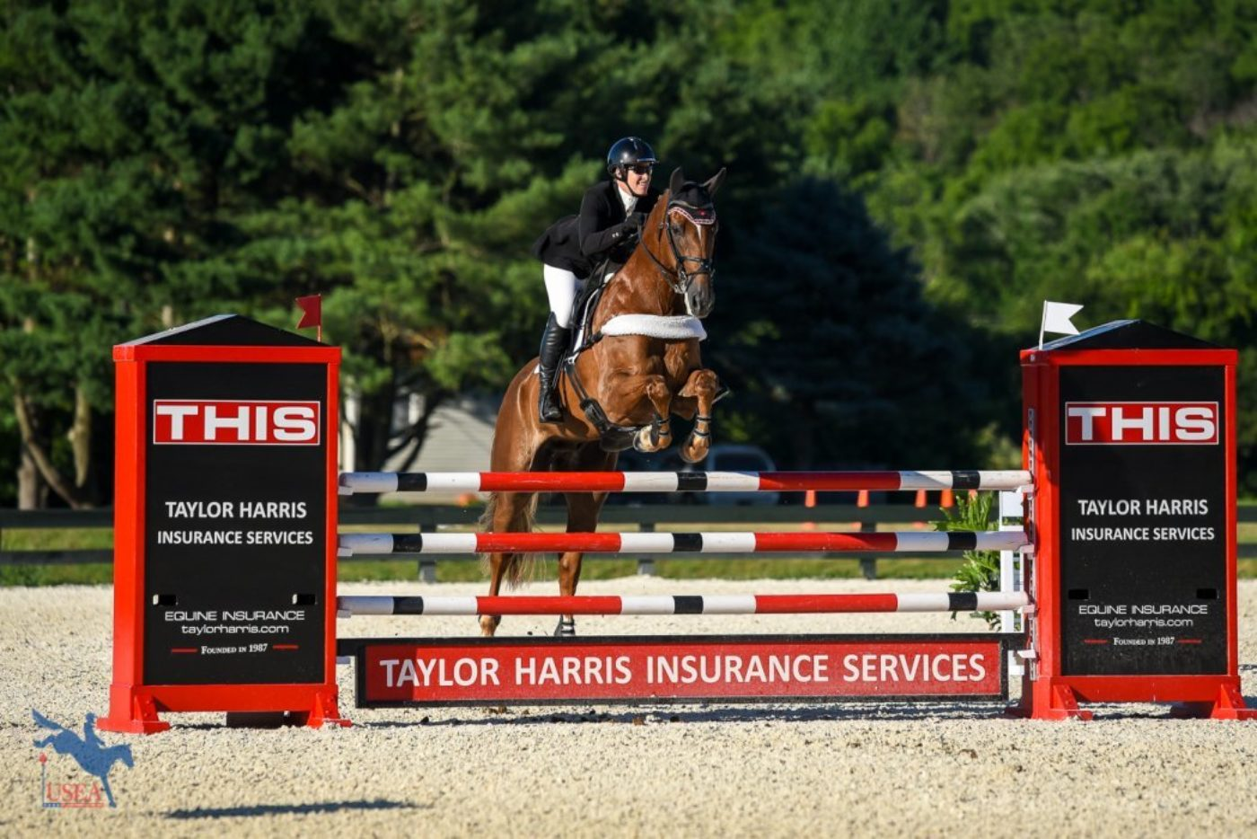 37th - Lisa Marie Fergusson and Honor Me - 45.9