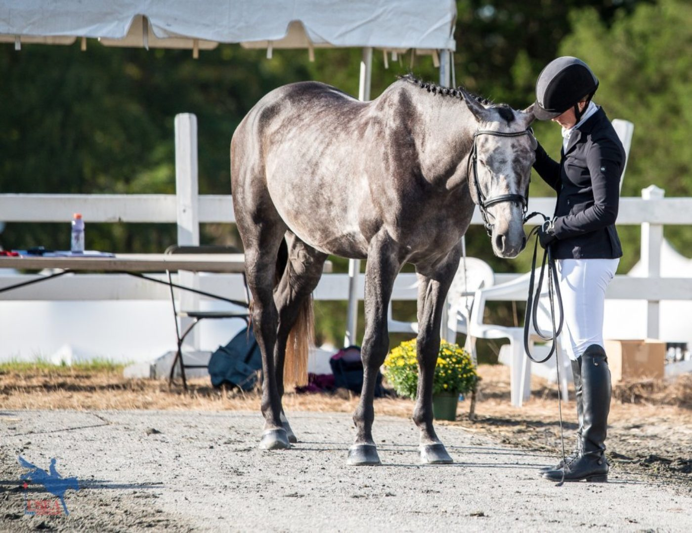 Sharing a quiet moment during the conformation portion of the USEA YEH East Coast Championships. USEA/Jessica Duffy Photo.
