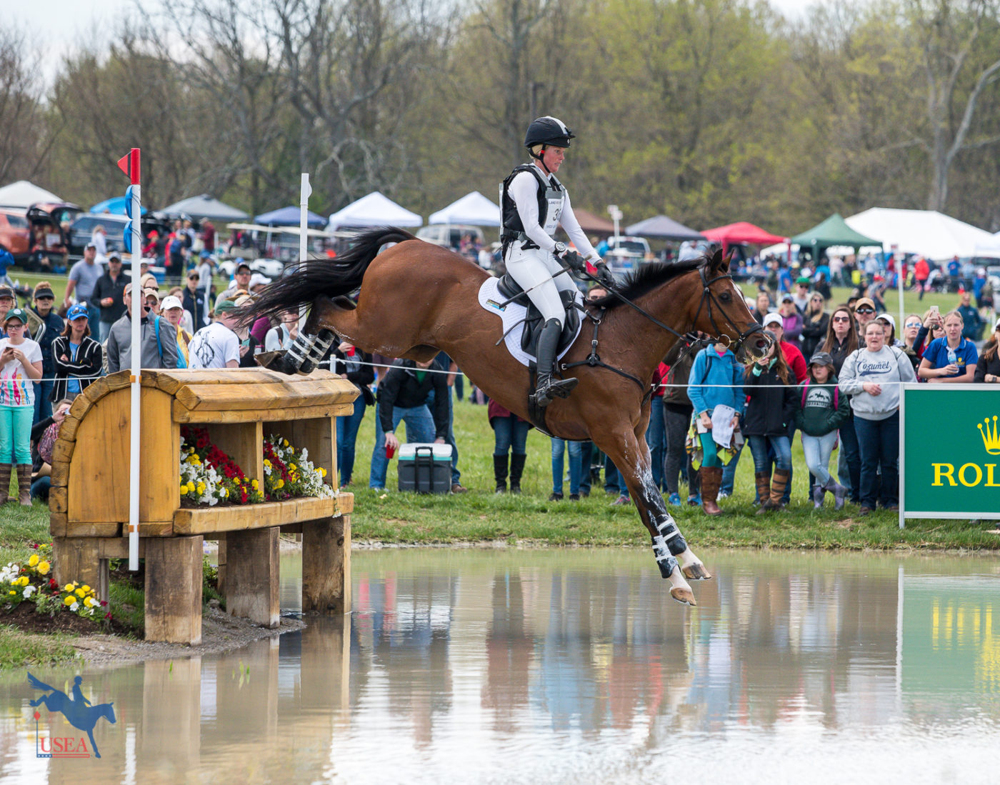 What the *****? The New FEI Star System Explained