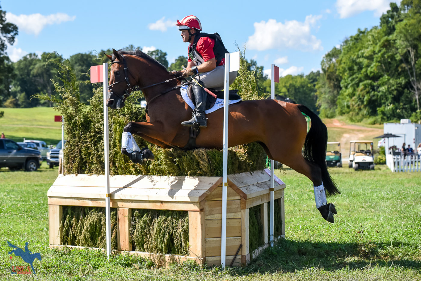 CCI3*-S 3rd - Buck Davidson and Electric Lux - 32.2