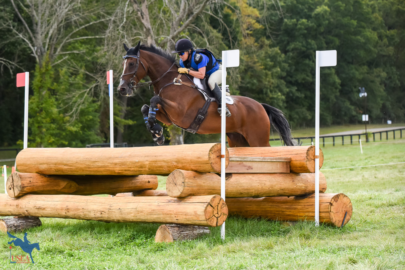 2nd - Colleen Rutledge and Covert Rights - 31.5