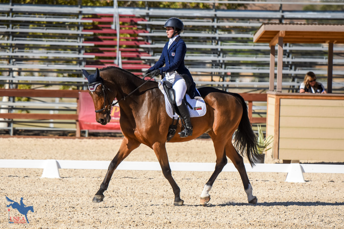 CCI3*-L 8th - Kaitlin Vosseller and Clear Approval - 36.8