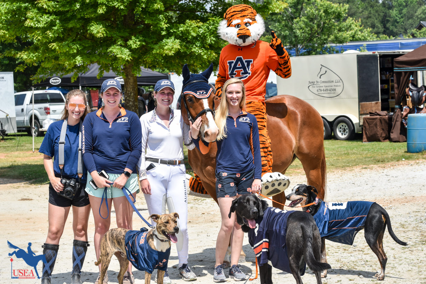 Aubie the Tiger made an appearance at Chattahoochee Hills!