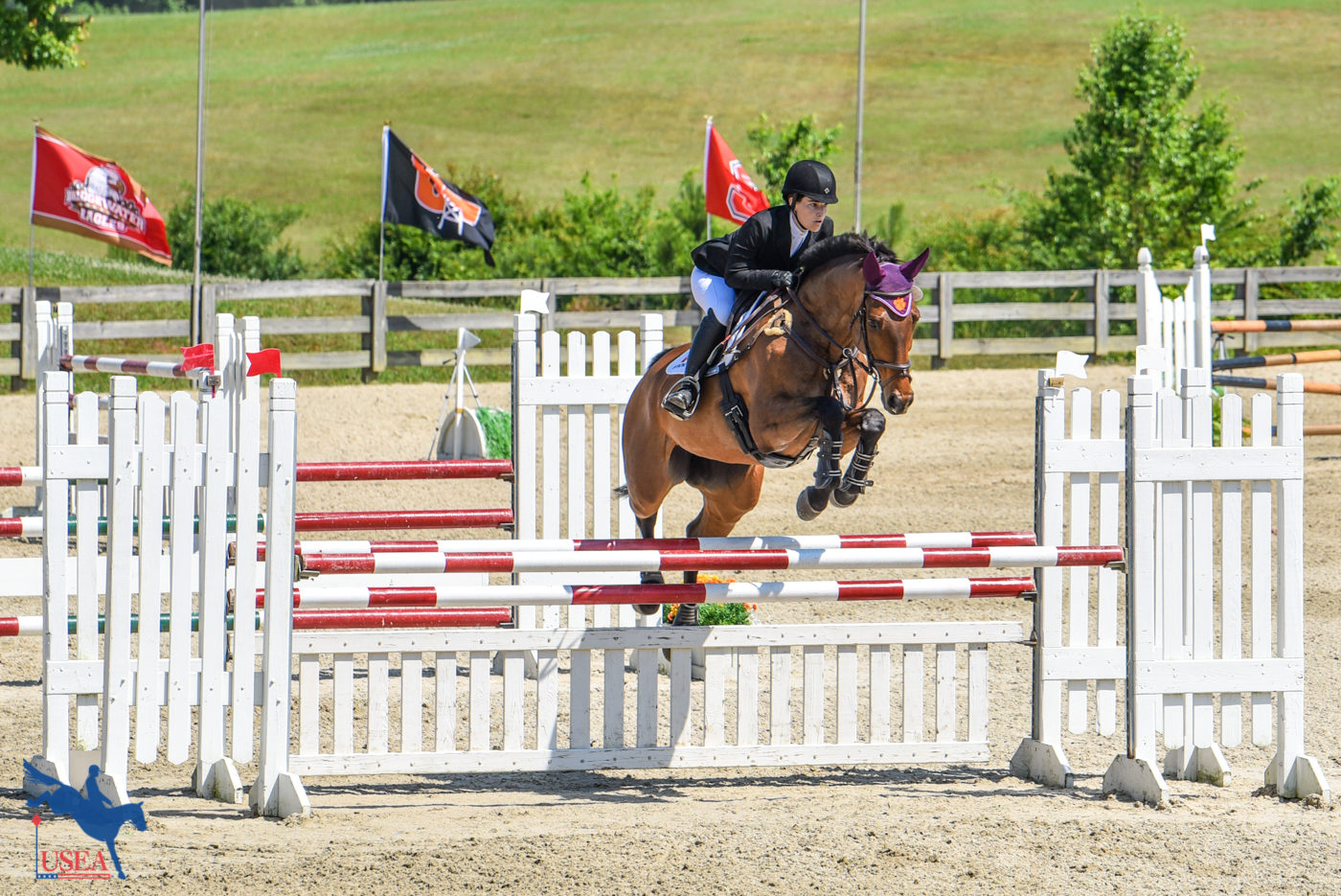Samantha Messamer and Finn McCool were picture perfect in the Preliminary for Clemson.