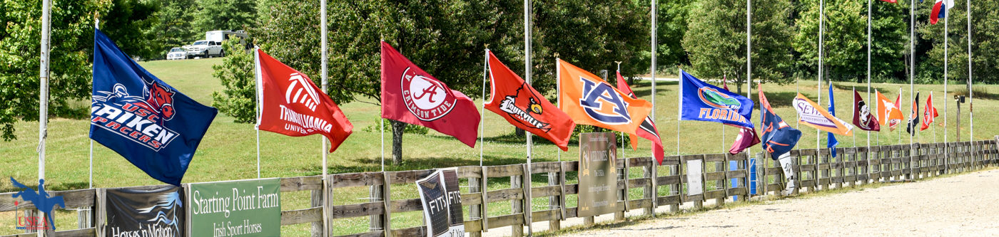 The college flags flew throughout the weekend.