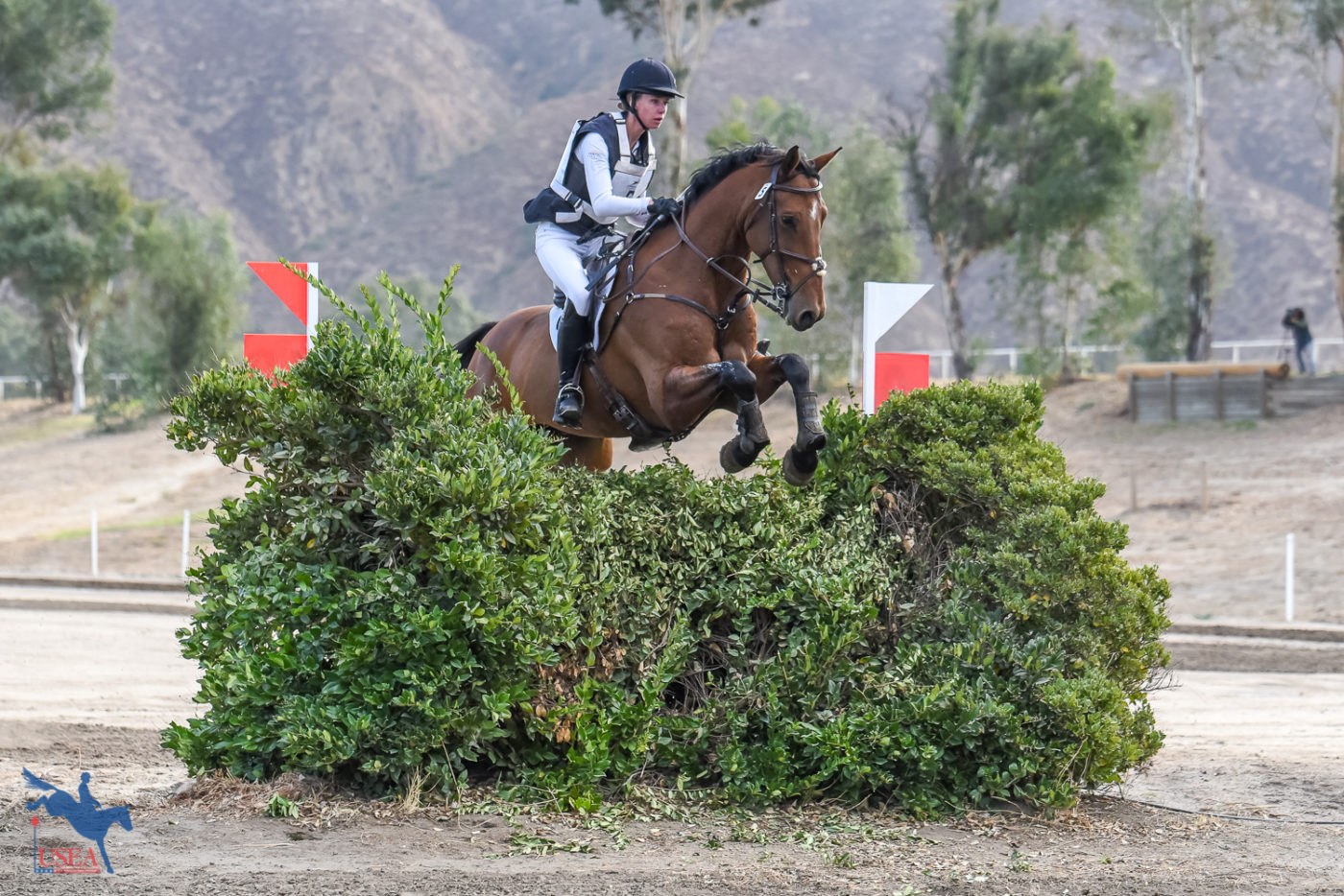 CCI3*-L 8th - Sophie Click and Quidproquo - 41.9