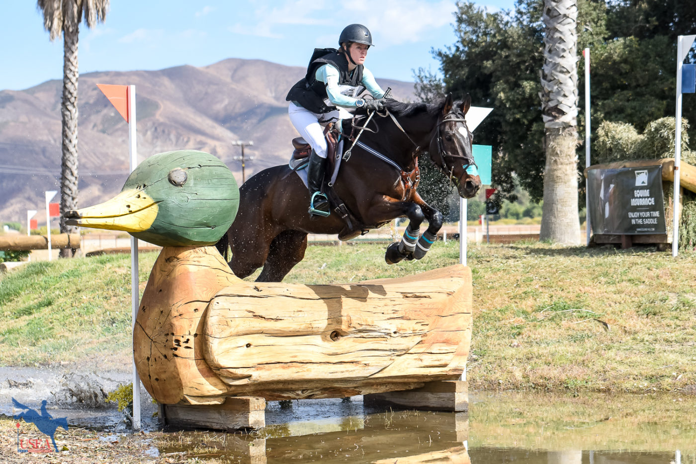 Duck, duck, goose! USEA/Jessica Duffy Photo.