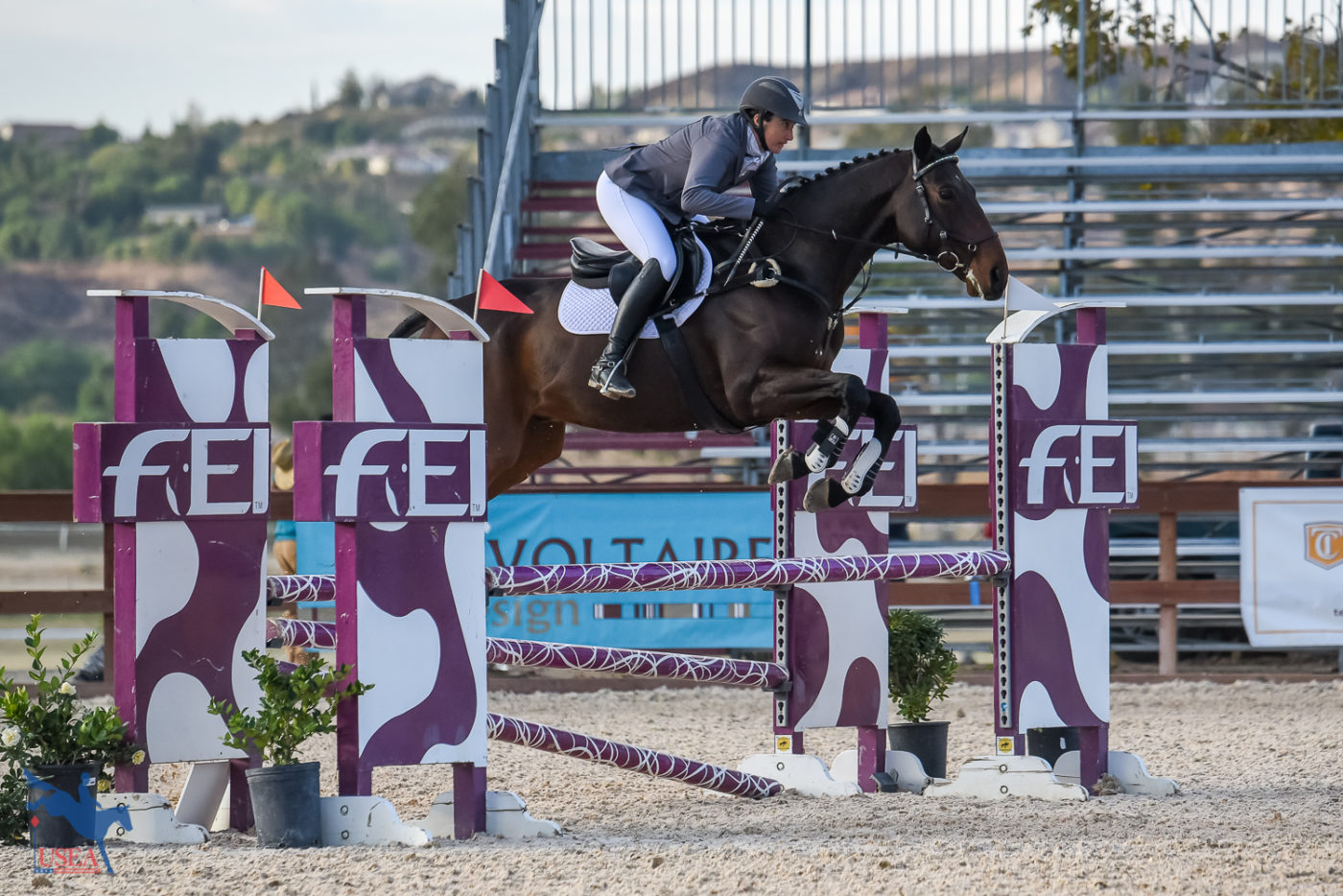 15th - Stephanie Nicora and Highly Likely - 50.8