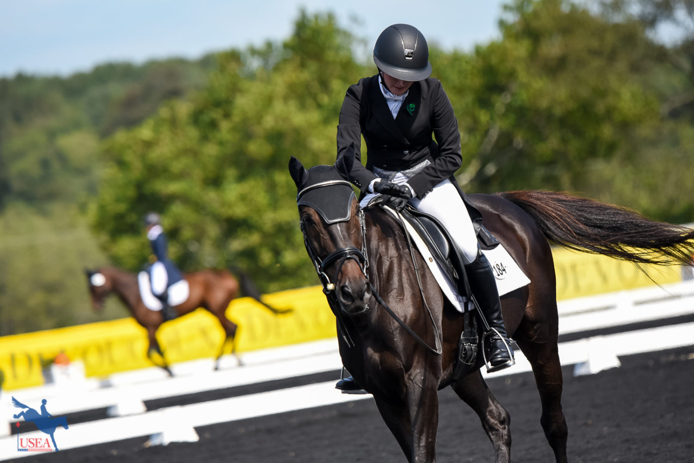 Caitlin Henderson praises Creative Dreamer for a job well done. USEA/Jessica Duffy Photo.