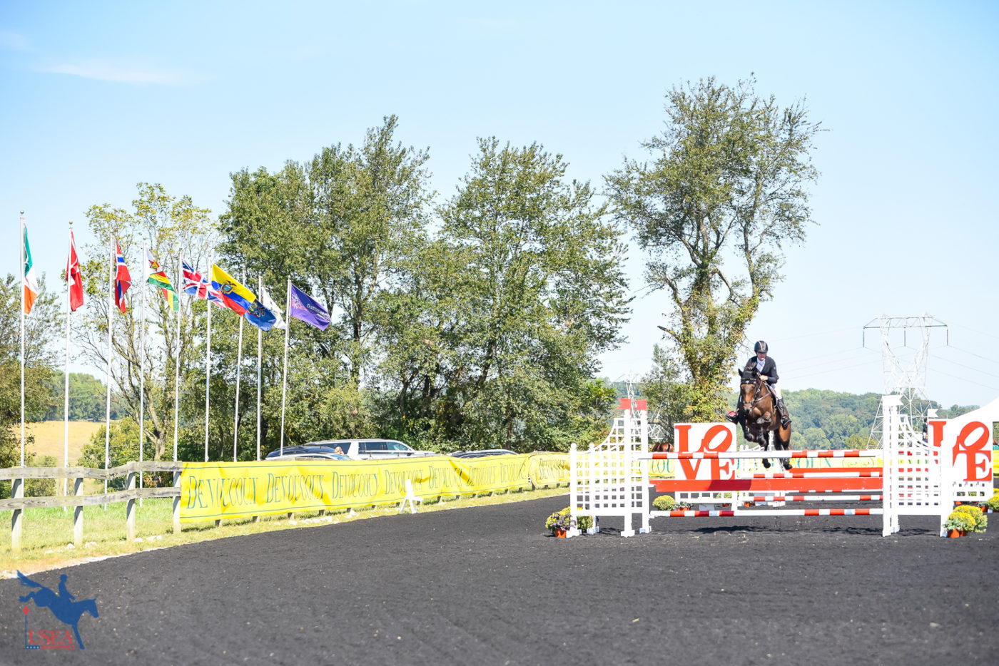 The iconic Plantation Field flags were flying high on Saturday. USEA/Jessica Duffy Photo.