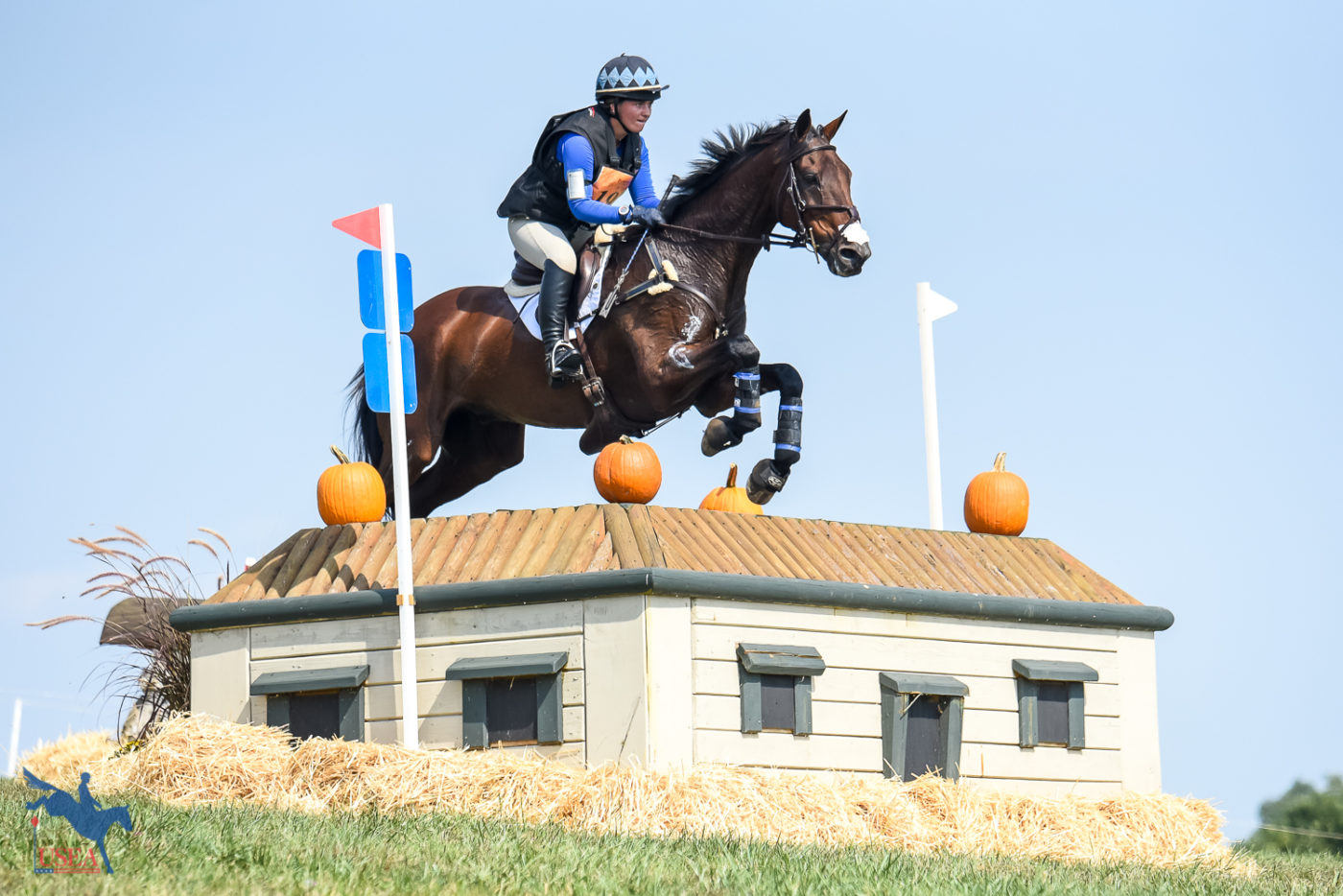 Ryan Keefe and 19-year-old Flintstar made easy work of the offset cabins. USEA/Jessica Duffy Photo.