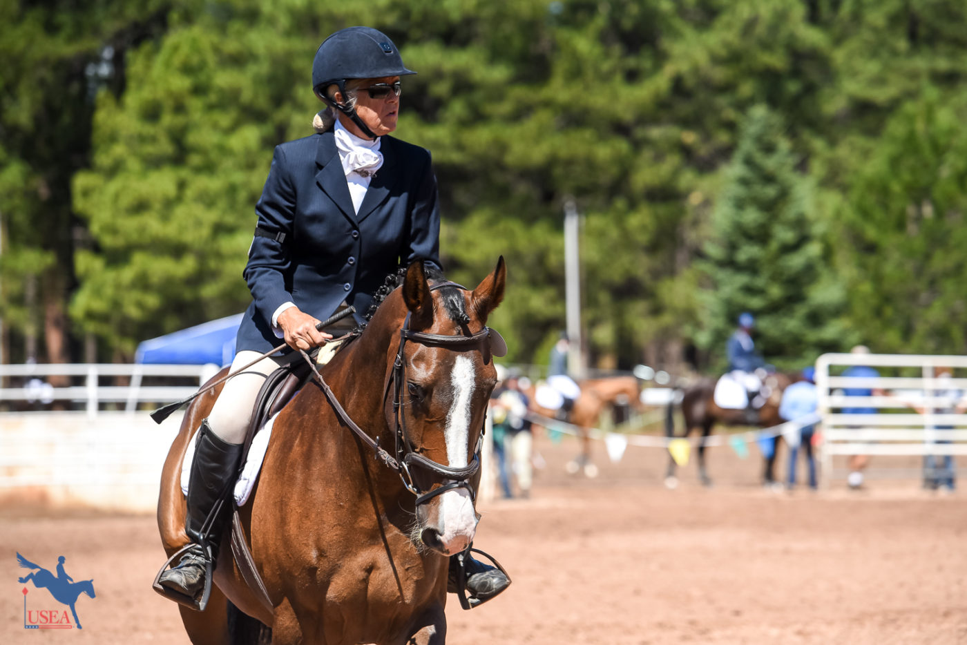Dr. Jennifer Miller and Bon Bon before their winning show jump round. USEA/Jessica Duffy Photo.