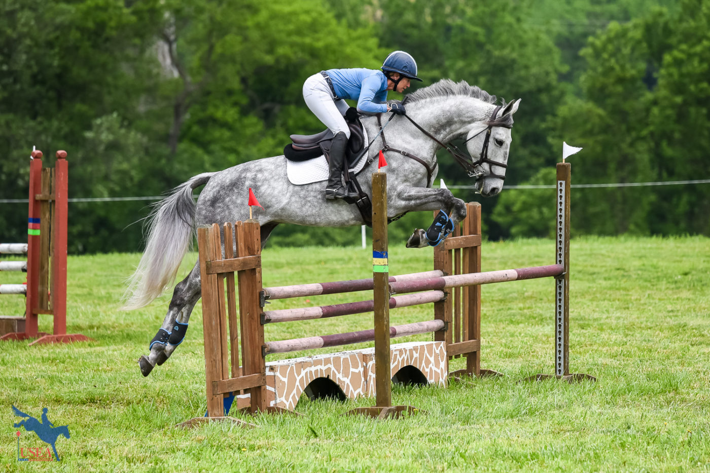 As part of the event's one-day format, riders completed their show jumping rounds and went immediately to cross-country. USEA/Jessica Duffy Photo.