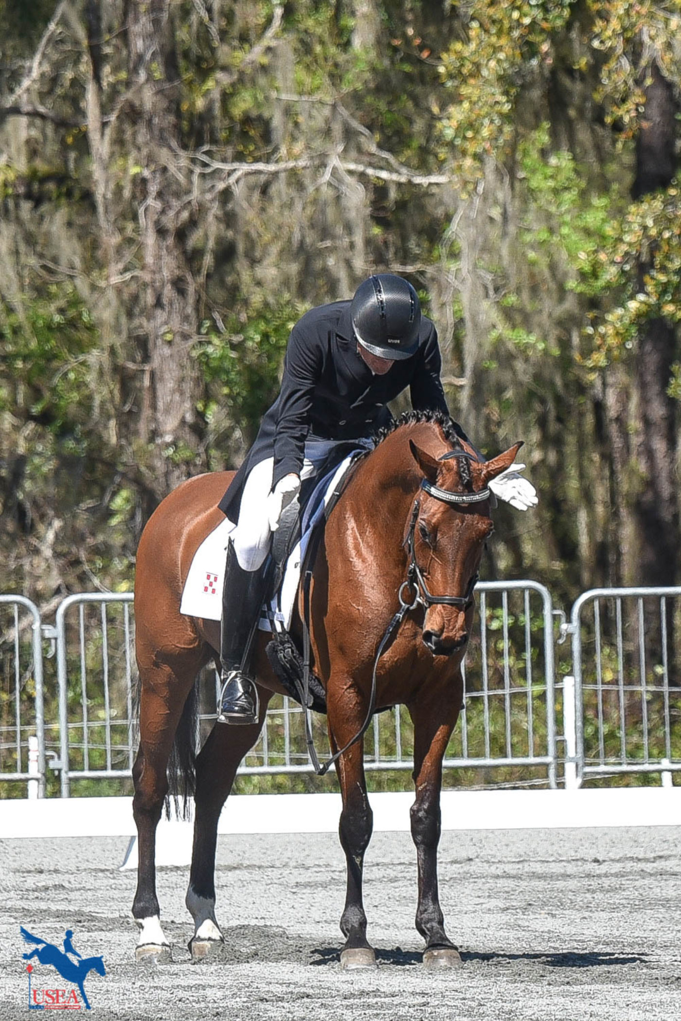 Kyle Carter was happy with a top 10 dressage finish with Reddy or Not. USEA/Kate Lokey photo.