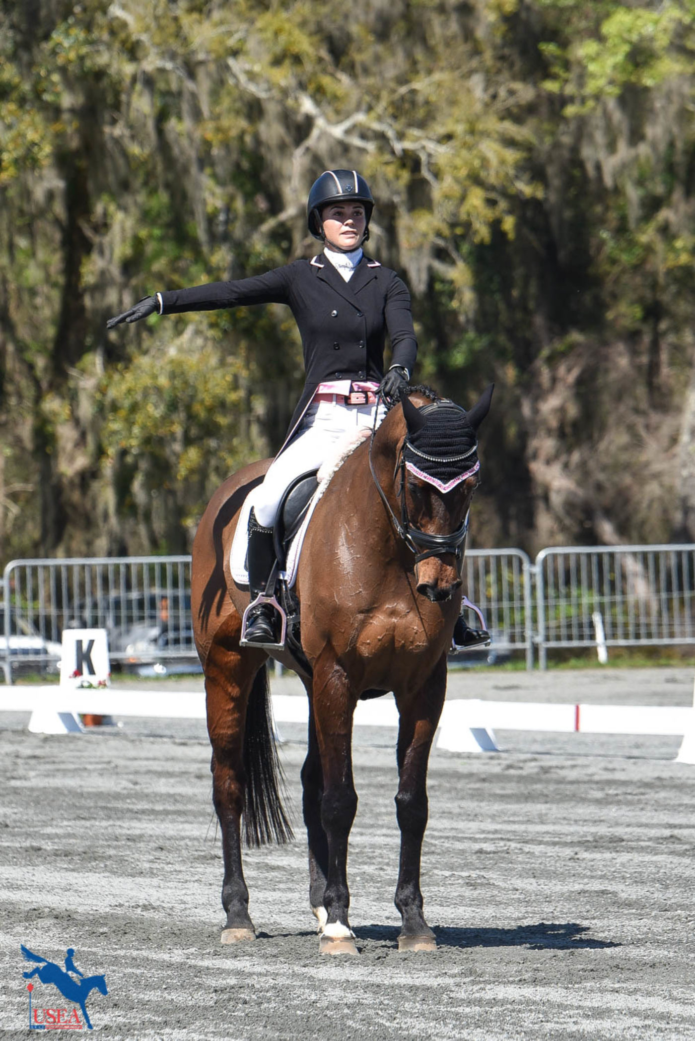 Charlotte Collier and Clifford M sit in 8th place after dressage. USEA/Kate Lokey photo.