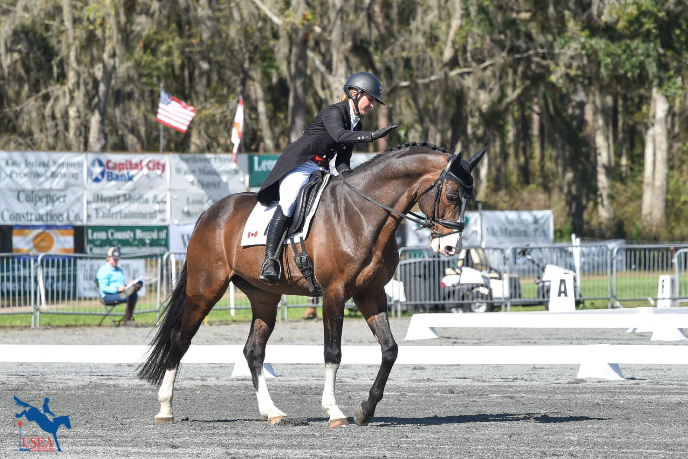 Jessica Phoenix pats Humble GS, who sits in 4th place after dressage. USEA/Kate Lokey photo.
